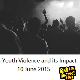 Youth Violence and its Impact 10 June 2015